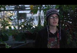 "Purple Circle – ""Feature #4: Gardening Club"""